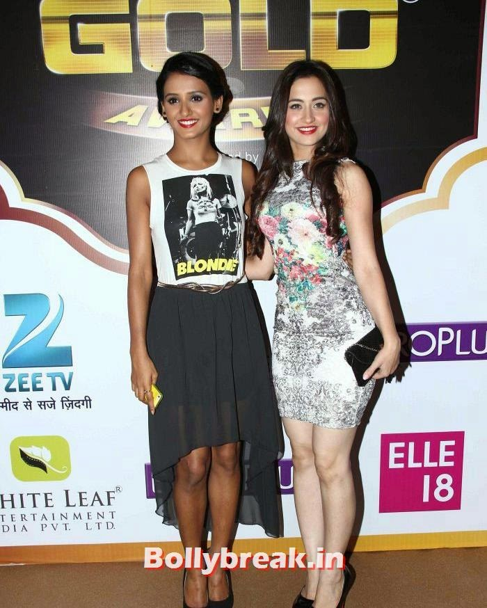 Sanjeeda Sheikh, Popular Tv Actresses on The Red Carpet of 7th Boroplus Gold Awards