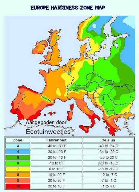 winterharde planten, hardiness, winterhard, zonnecyclus, hardheidszone, zonneminimum, strenge winter, vorst, siertuin, sierplanten