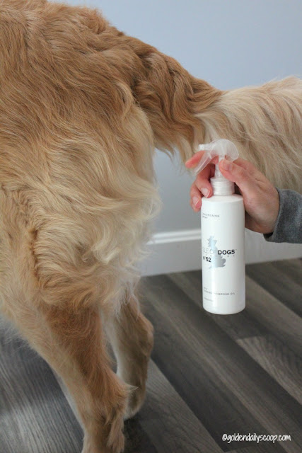 a conditioning spray for your golden retriever dog's coat to increase shine and soften skin