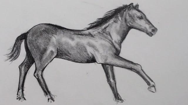 رسم حصان بالرصاص