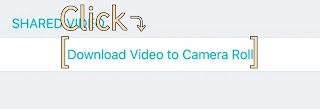 Download Video to Camera Roll