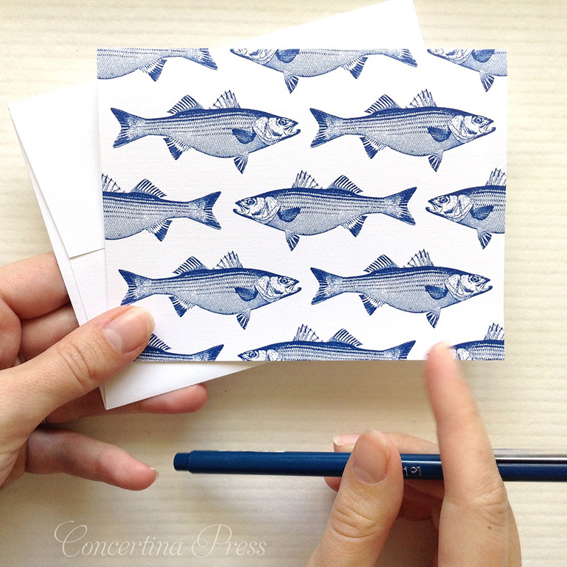 Striped Bass Notecards - Perfect Gift for A Fisherman from Concertina Press