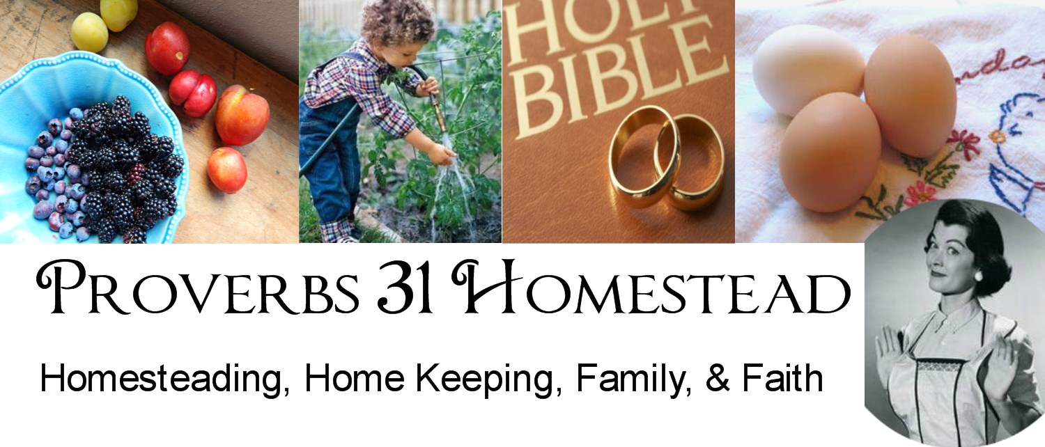 Proverbs 31 Homestead
