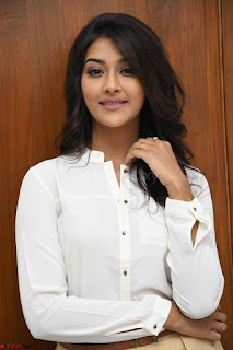 Pooja Jhaveri in White Shirt and Brown Trousers Spicy Pics 05.jpg