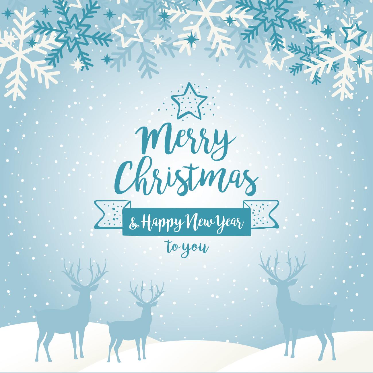 Merry Christmas 2016 Photos