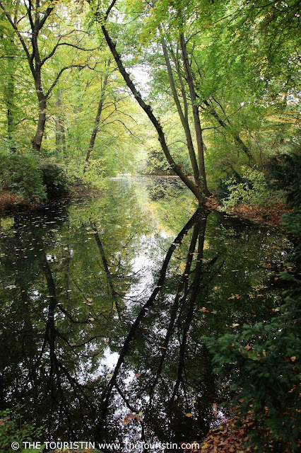 Trees in autumn foliage; whole scene reflected in the lake.