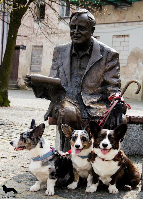 podróże z psem, podróżowanie z psem, z psem w podróży, płock, z psem w płocku, nad wisłą, pies w mieście, na wycieczce, biba, yuma, twiggy, welsh corgi, welsh corgi cardigan, cardigan, cardimania