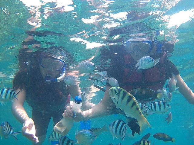 Menyelam di Pantai Jepara