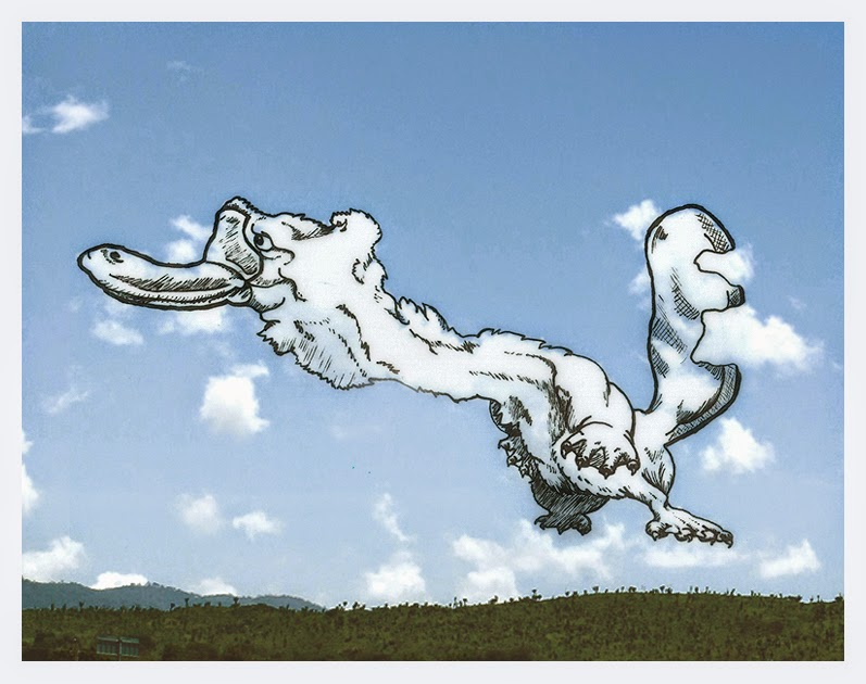 15-Long-Neck-Platypus-Cloud-Martín-Feijoó-Images-in-the-Sky-Cloud-Drawings-www-designstack-co