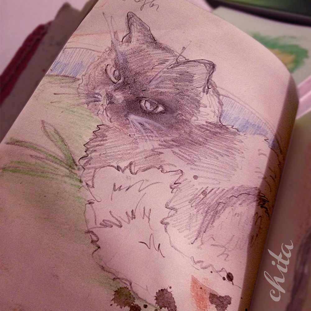 Pushkin cat-sketch