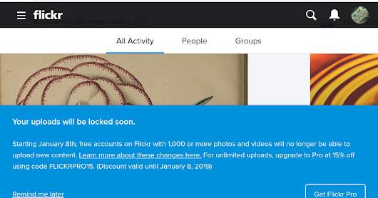 Free Flickr accounts with 1000 or more photos will be locked January 8 - archive your images!