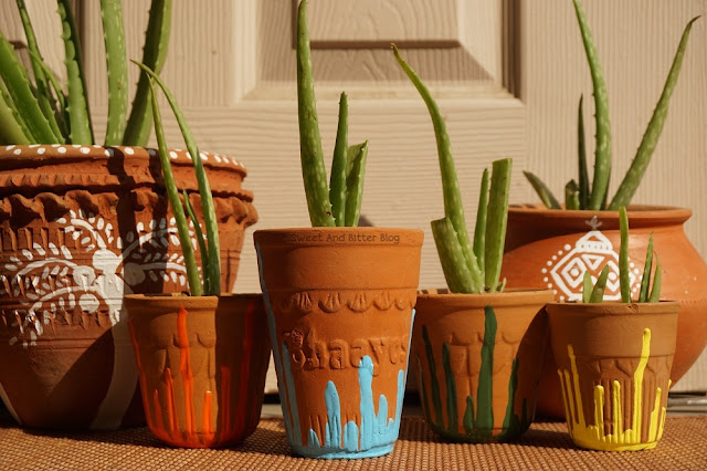 Upcycle Earthen Clay Tea Cups Kullad Planters Aloe Vera