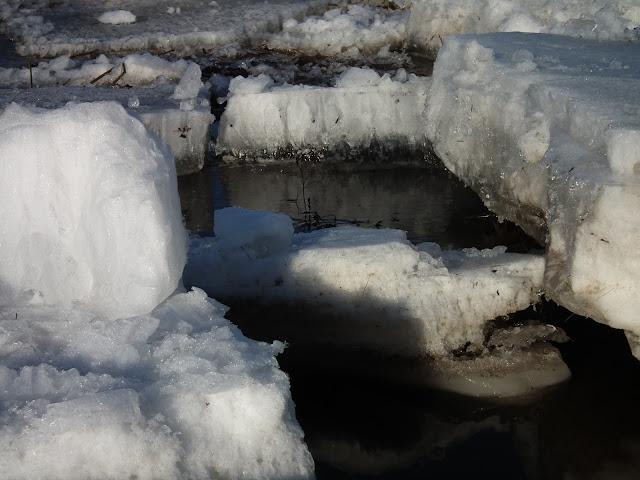 jää, tulva, kevät, jäälautat