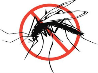 Pantangan Makanan Bagi Penderita Malaria