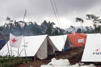 Demi Kemanusiaan, Seorang Warga Rela Lahan Wortelnya Dijadikan Area Pengungsian