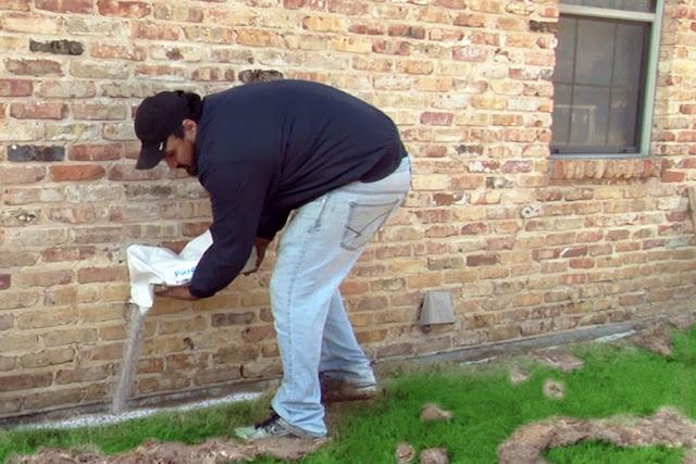 Subterranean Termites treatment