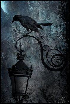 Moonset Lily's Magical Musings: May 2017