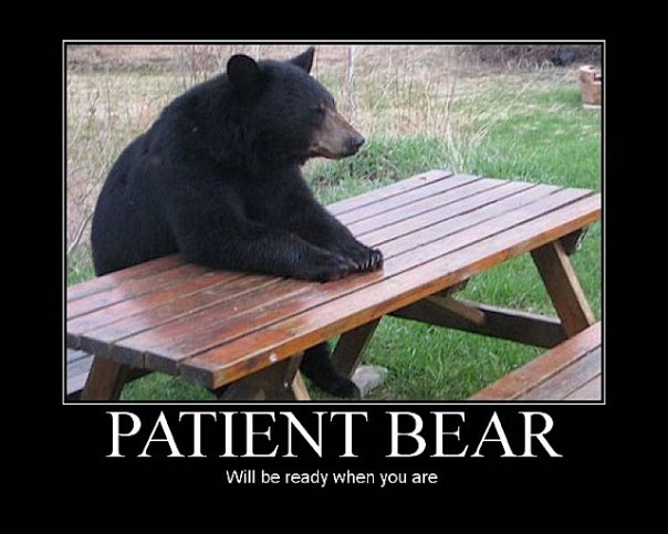 bear wrongs patiently - 543×442