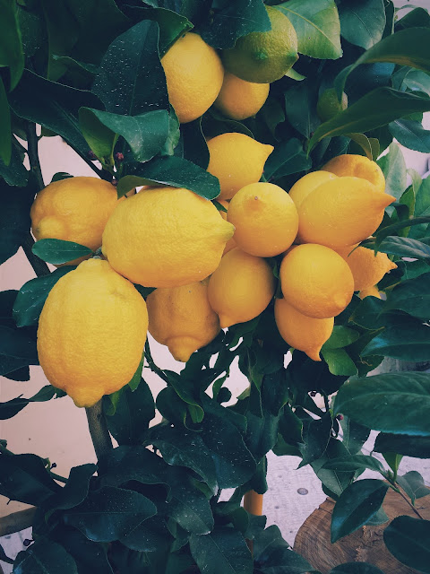 Ioanna's Notebook - 20 Reasons to start your day with water and lemon