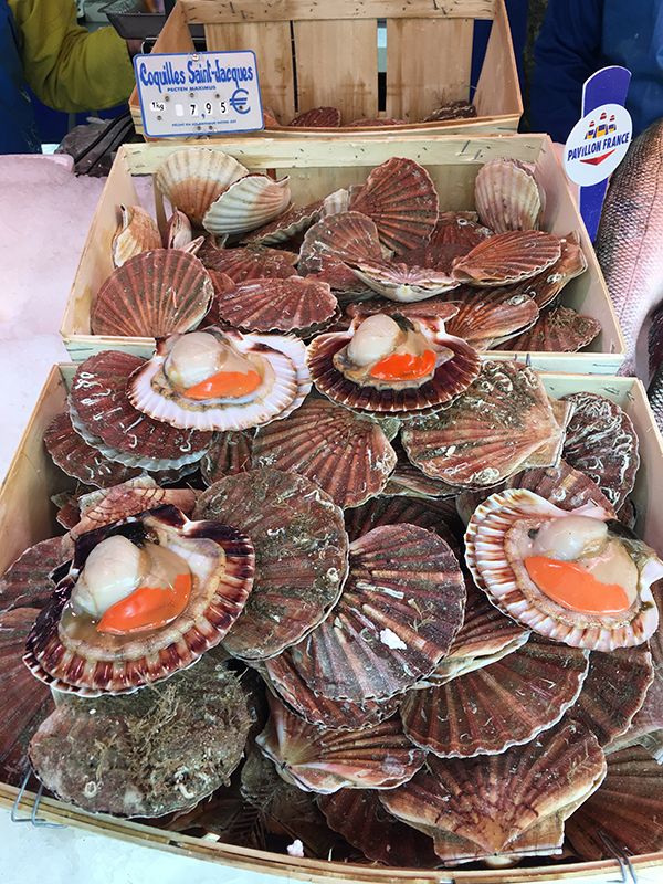 scallops at Bastille farmers market