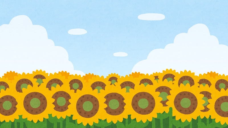 ひまわり畑のイラスト 背景素材 かわいいフリー素材集 いらすとや