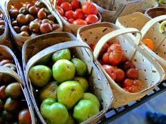 Verrill Farm Day Heirloom Tomatoes Concord MA New England Fall Events