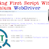 How to start automation with selenium webdriver
