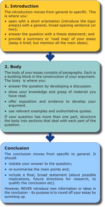 Literature essay organization