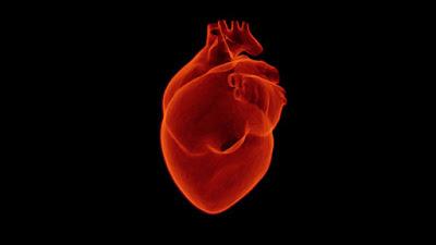 Buah untuk Kesehatan Jantung