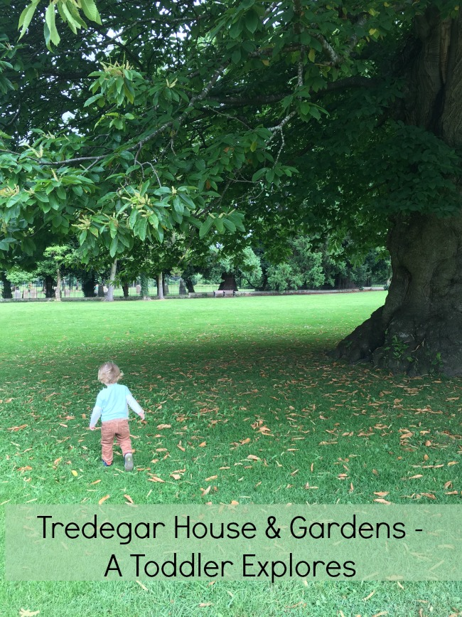 Tredegar-House-&-gardens-a-toddler-explores-text-on-picture-of-toddler-in-parkland