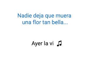 Don Omar Ayer la Vi significado de la canción.