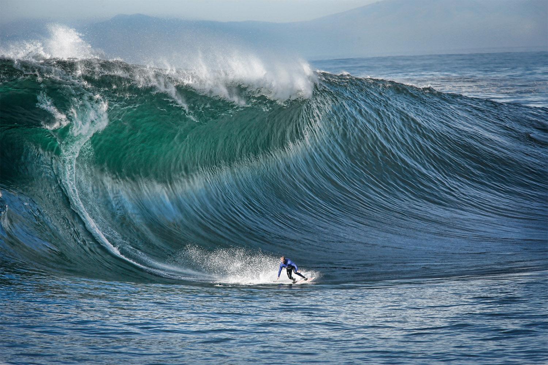 Nature S Ocean