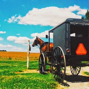 Ky Amish Where To Shop