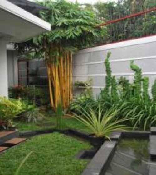 Desain Taman Kecil Depan Belakang Dalam Dan Samping Rumah Terbaru 2017
