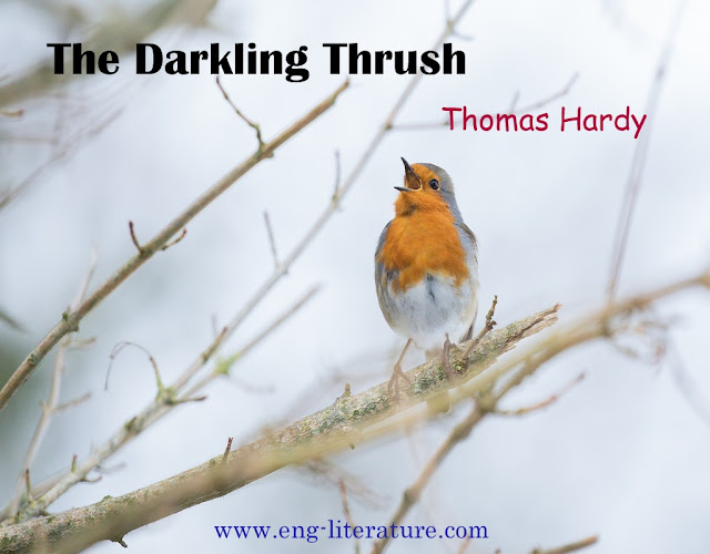 "Bring out the contrast between Hardy's Pessimism and the Thrush's Optimism in the poem ""The Darkling Thrush""."