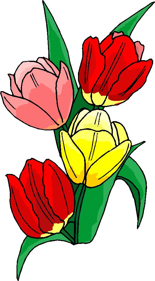clip art flowers microsoft - photo #35