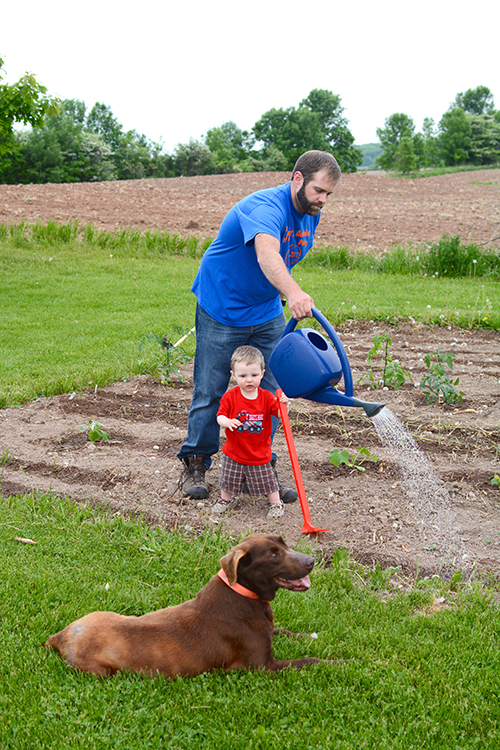 Gardening with a toddler; #gardenlife | My Darling Days