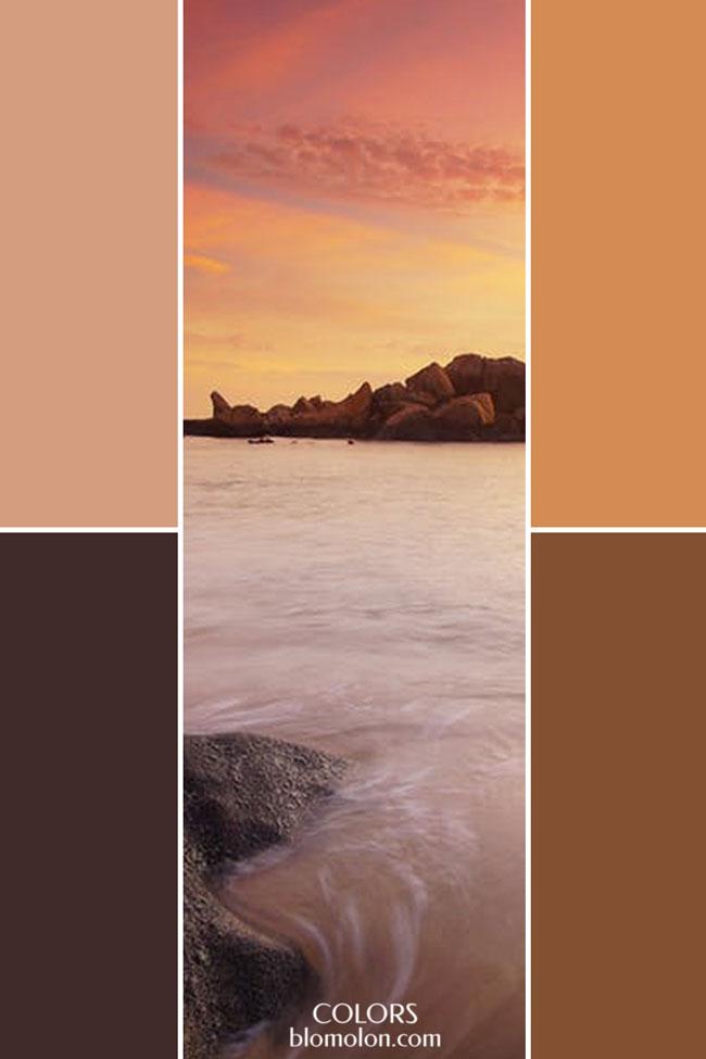 combinacion_variedad_de_color_6