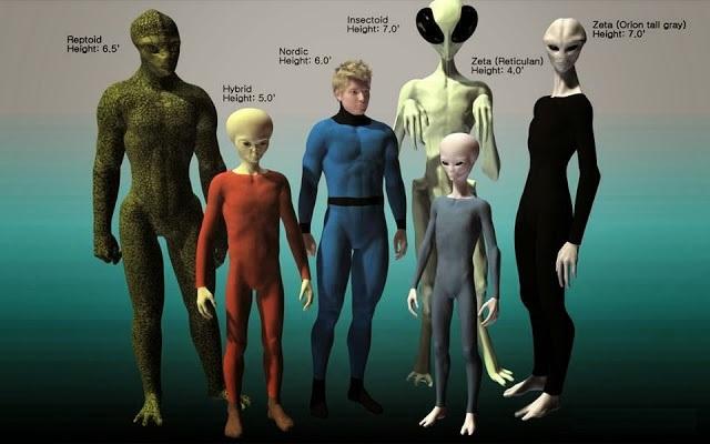Resultado de imagem para Os Grays baixos Os Grays altos ou Brancos Os Reptilianos Os Draconianos Os Sirianos de Sirius B Os Annunaki