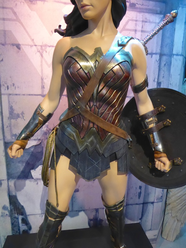 Batman v Superman Wonder Woman movie costume