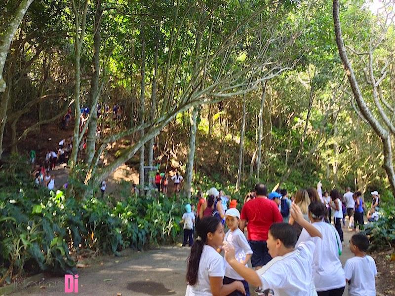 A entrada da trilha em um final de semana