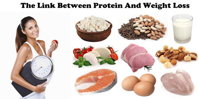 Protein And Weight Loss, weight loss, protein