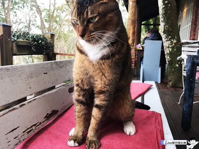 IMG 2547 - 【新竹旅遊】六號花園 景觀餐廳 | 隱藏在新竹尖石鄉的森林秘境,在歐風建築裡的別墅享受芬多精下午茶~