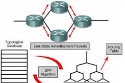 Pengertian Algoritma Link State