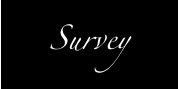 the survey - translation US
