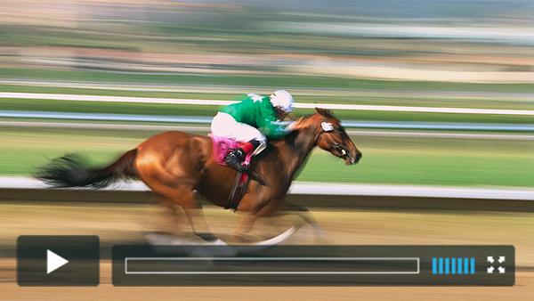 Watch live Horse Racing Streams in HD