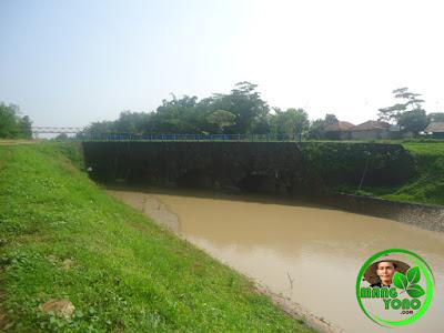 Di bawah jembatan pintu kecil/sasak serong pengerukan lumpur (normalisasi) tidak dikerjakan