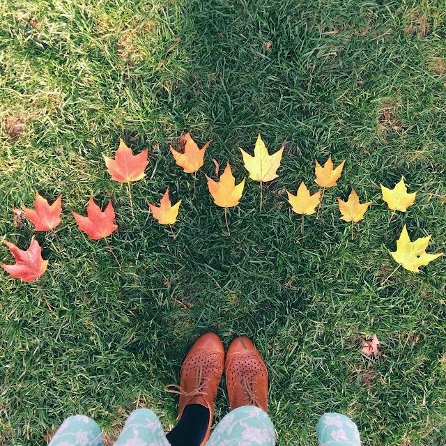 artsy fall photo