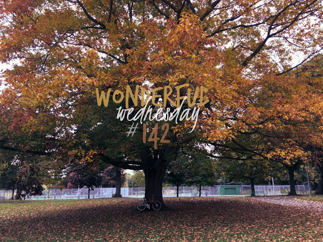 Wonderful Wednesday #142