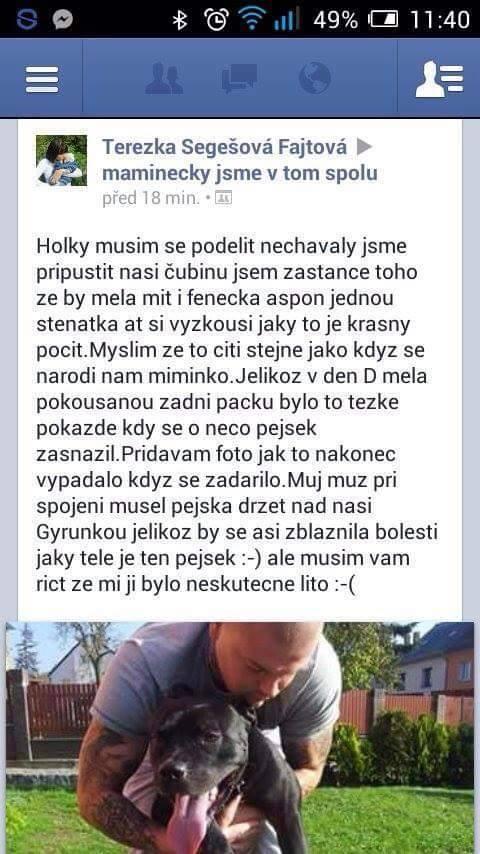 Nucené krytí (protivna-blondyna.cz)